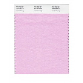 Pantone 13-2120 TN Cotton Candy Nylon Brights Swatch Card