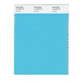 Pantone 14-4530 TN Bluefish Nylon Brights Swatch Card