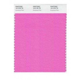 Pantone 16-2130 TN Knockout Pink Nylon Brights Swatch Card