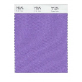Pantone 16-3828 TN Purple Hebe Nylon Brights Swatch Card