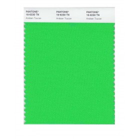 Pantone 16-6230 TN Andean Toucan Nylon Brights Swatch Card