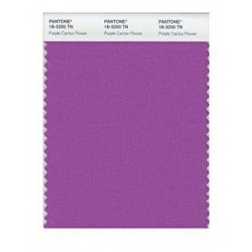 Pantone 18-3250 TN Prpl Cactus F Nylon Brights Swatch Card