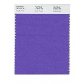 Pantone 18-3940 TN Simply Purple Nylon Brights Swatch Card