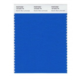 Pantone 18-4245 TN Elctr Bl Lemo Nylon Brights Swatch Card