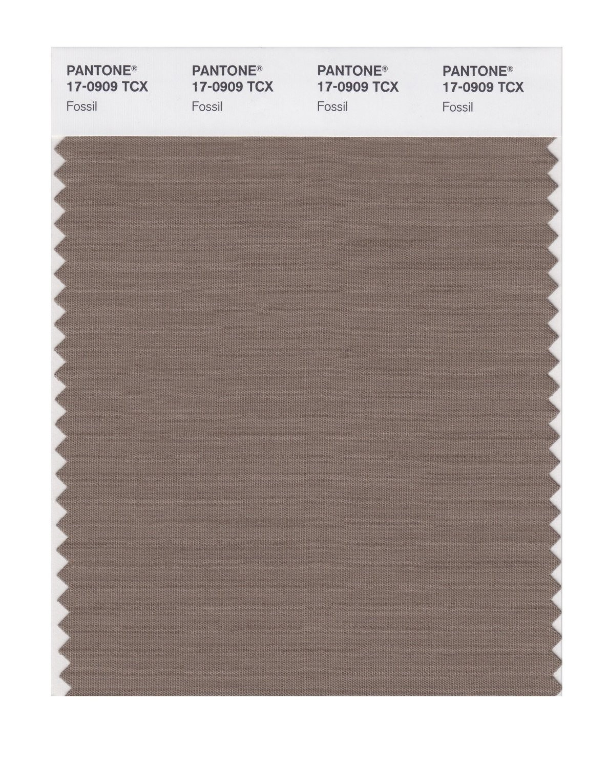Pantone 17-0909 TCX Swatch Card Fossil