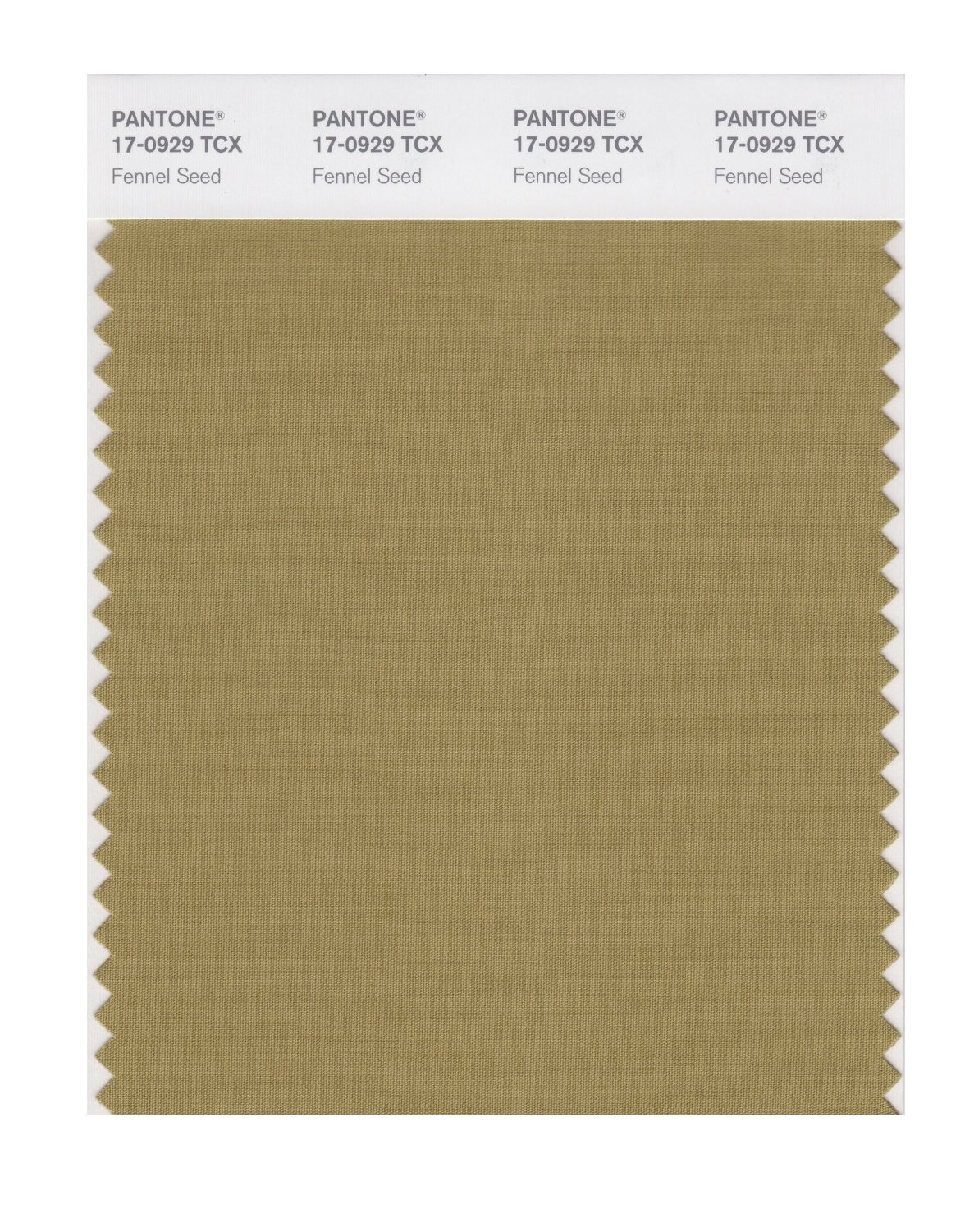 Pantone 17-0929 TCX Swatch Card Fennel Seed