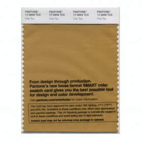 Pantone 17-0949 TCX Swatch Card Chai Tea