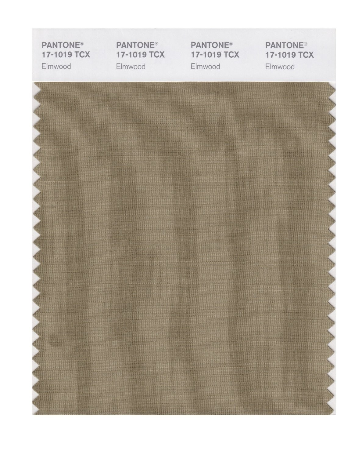 Pantone 17-1019 TCX Swatch Card Elmwood