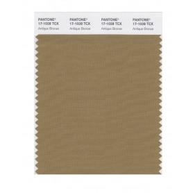 Pantone 17-1028 TCX Swatch Card Antique Bronze