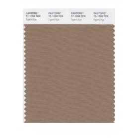 Pantone 17-1038 TCX Swatch Card Tiger's Eye