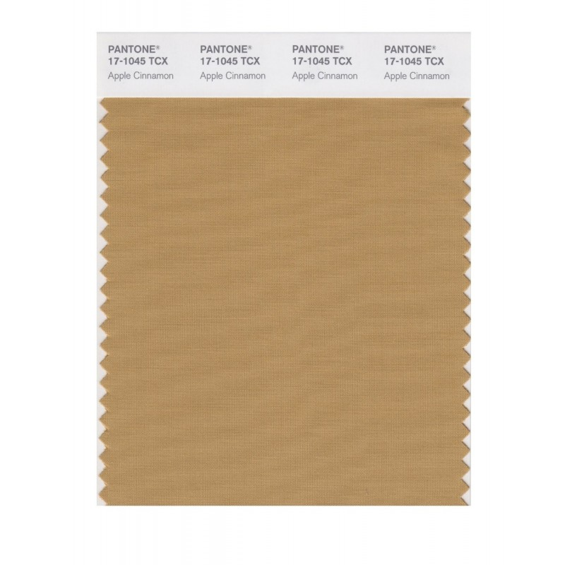 Pantone 17-1045 TCX Swatch Card Apple Cinnamon