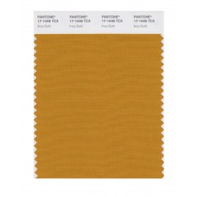 Pantone 17-1048 TCX Swatch Card Inca Gold