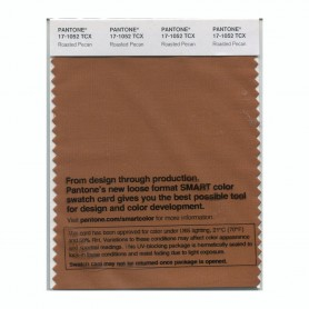 Pantone 17-1052 TCX Swatch Card Roasted Pecan