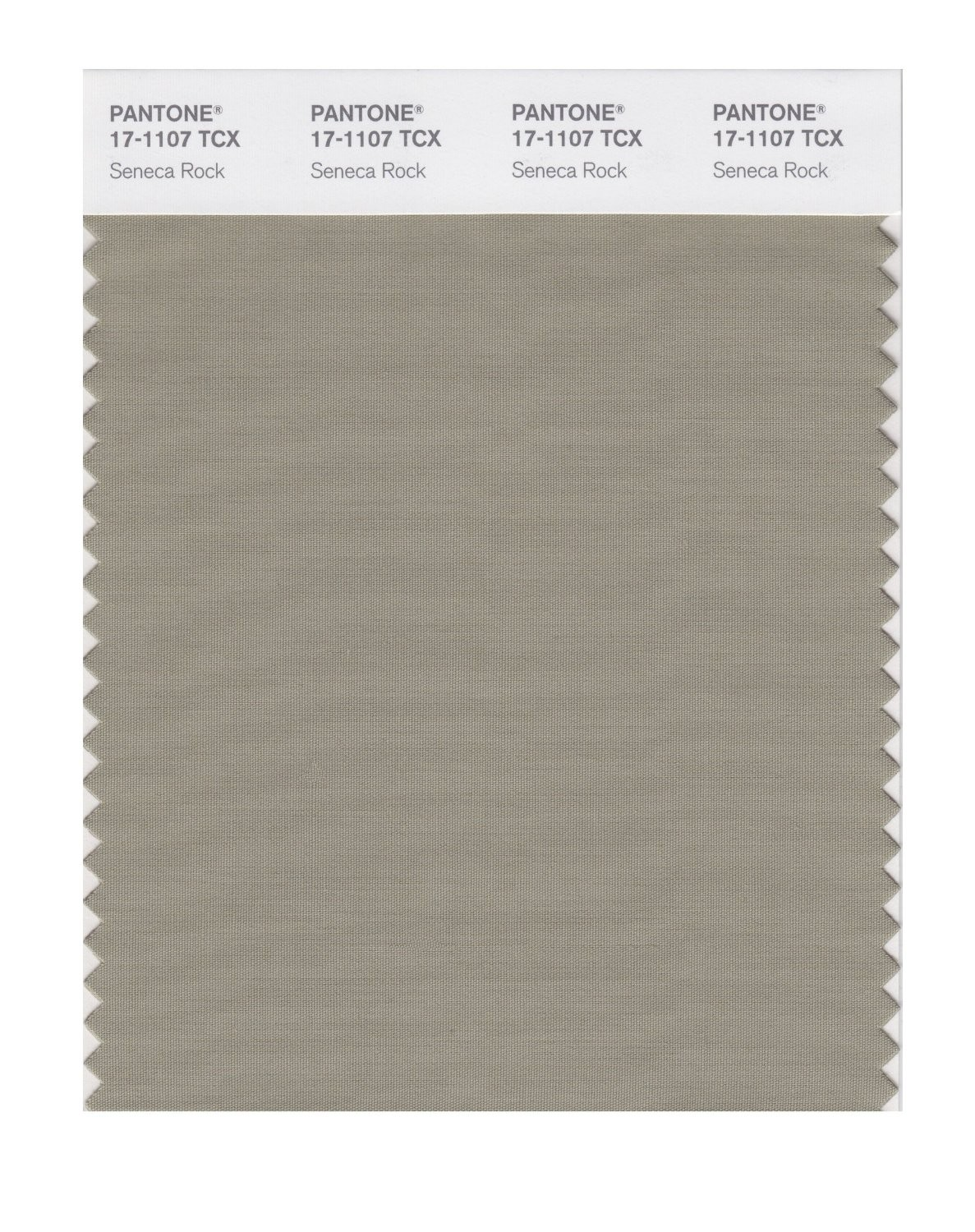 Pantone 17-1107 TCX Swatch Card Seneca Rock