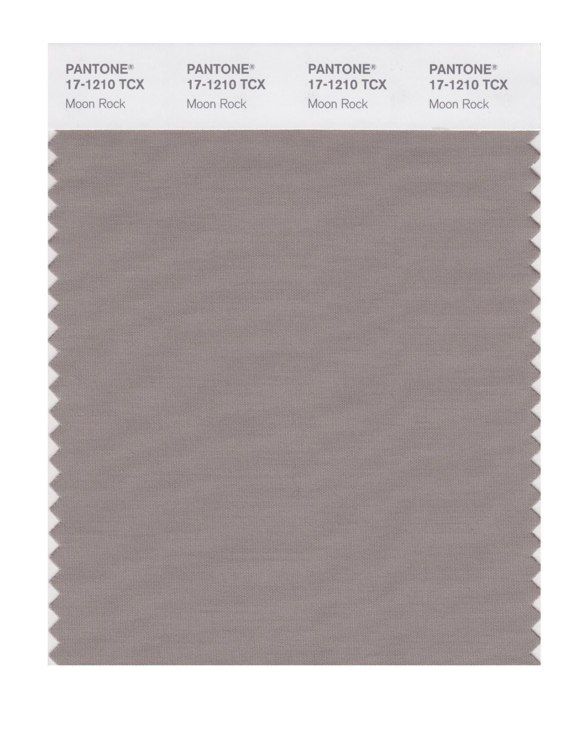 Pantone 17-1210 TCX Swatch Card Moon Rock