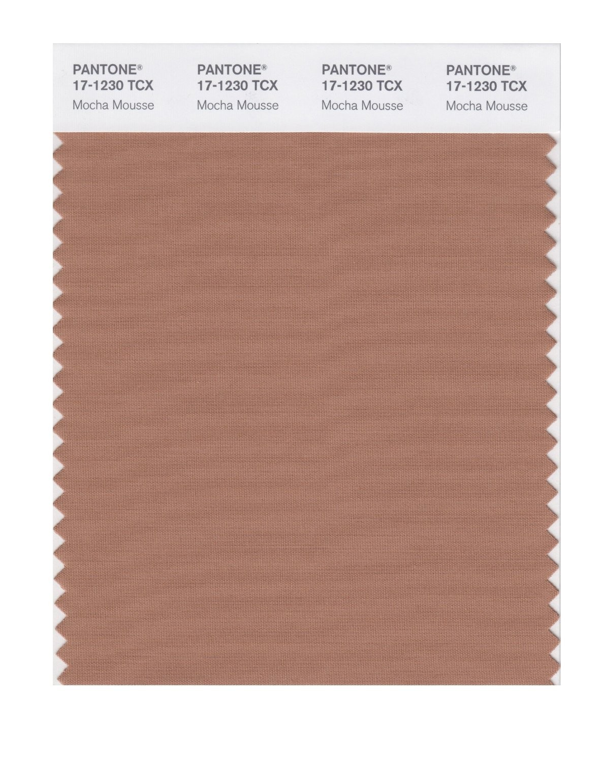 Pantone 17-1230 TCX Swatch Card Mocha Mousse