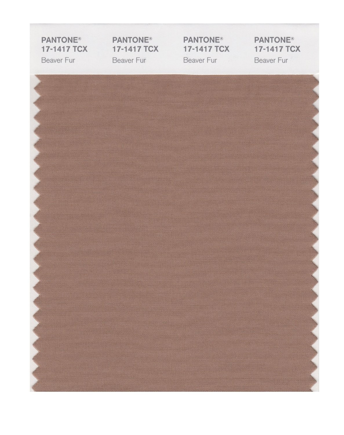 Pantone 17-1417 TCX Swatch Card Beaver Fur