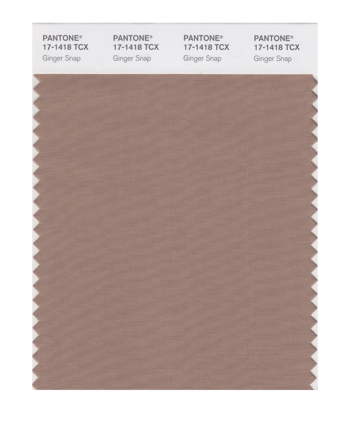Pantone 17-1418 TCX Swatch Card Ginger Snap