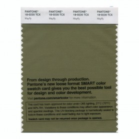 Pantone 18-0220 TCX Swatch Card Mayfly