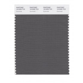 Pantone 18-0306TCX Swatch Card Gunmetal