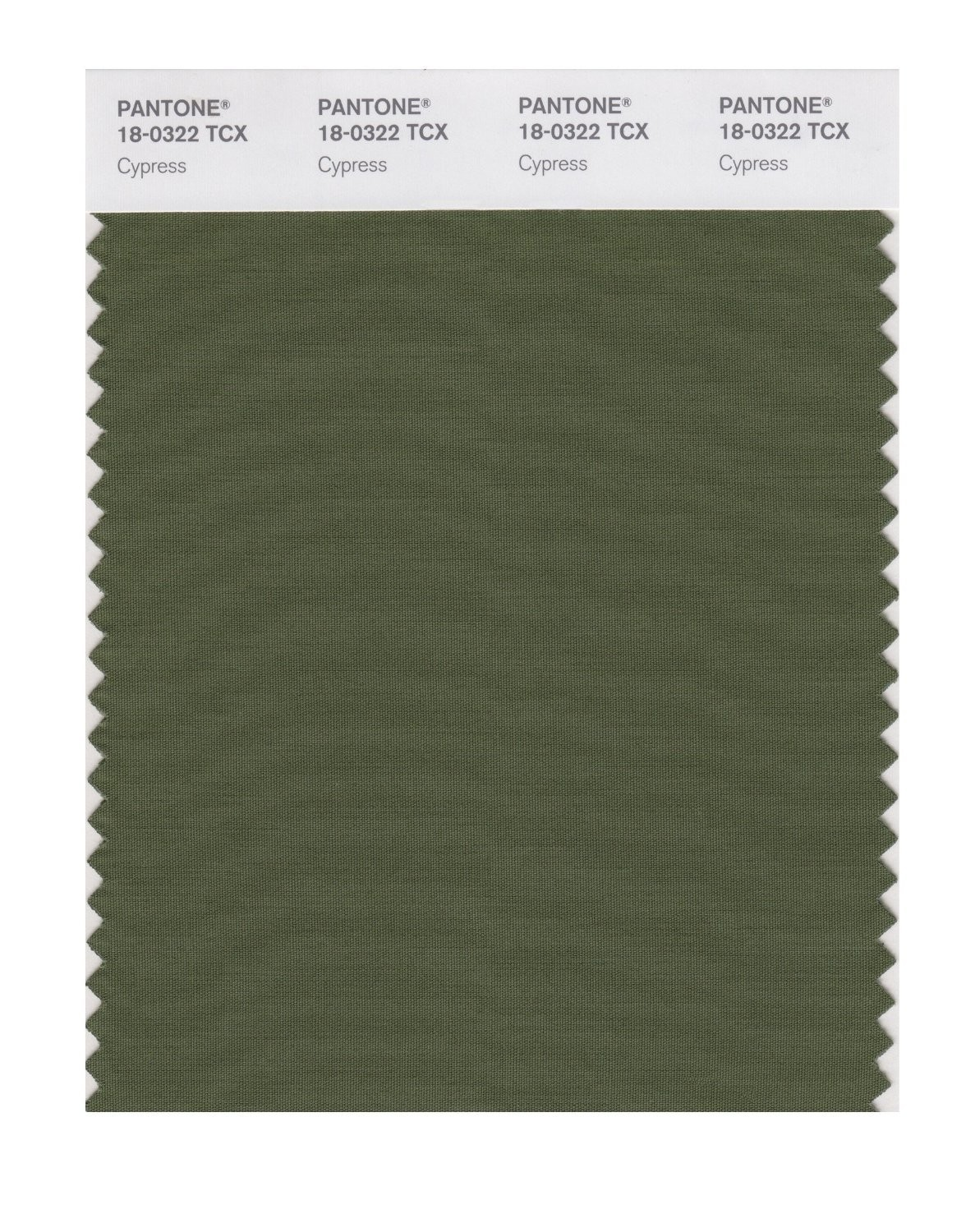 Pantone 18-0322 TCX Swatch Card Cypress