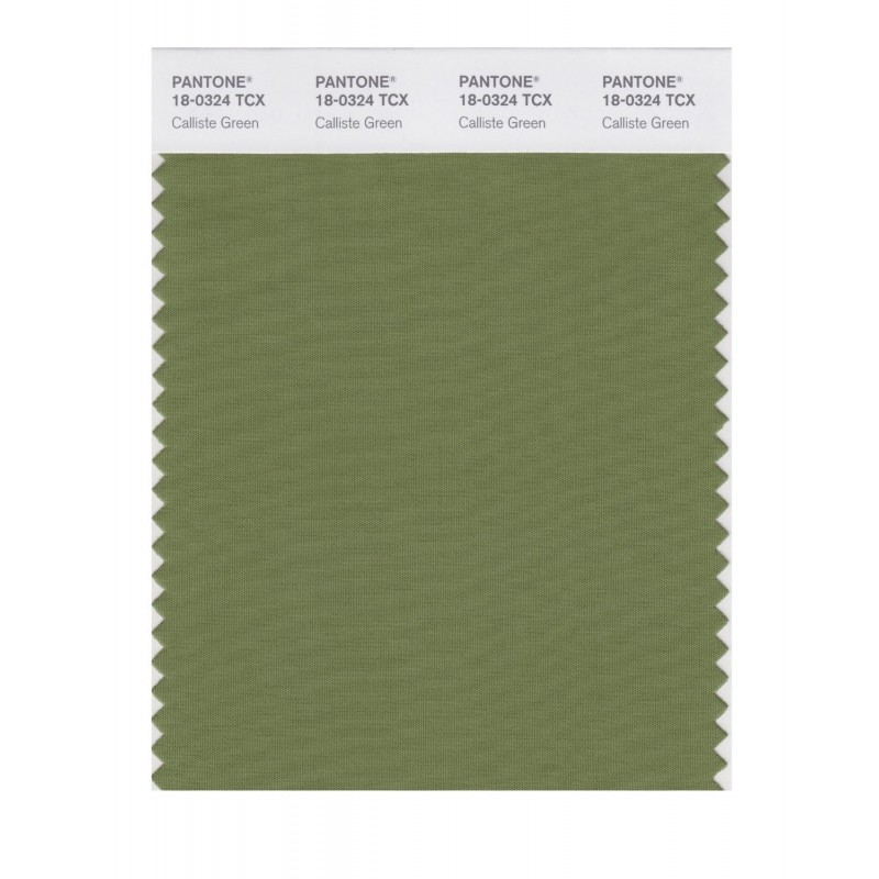 Pantone 18-0312 TCX Swatch Card Dp Lichen Green