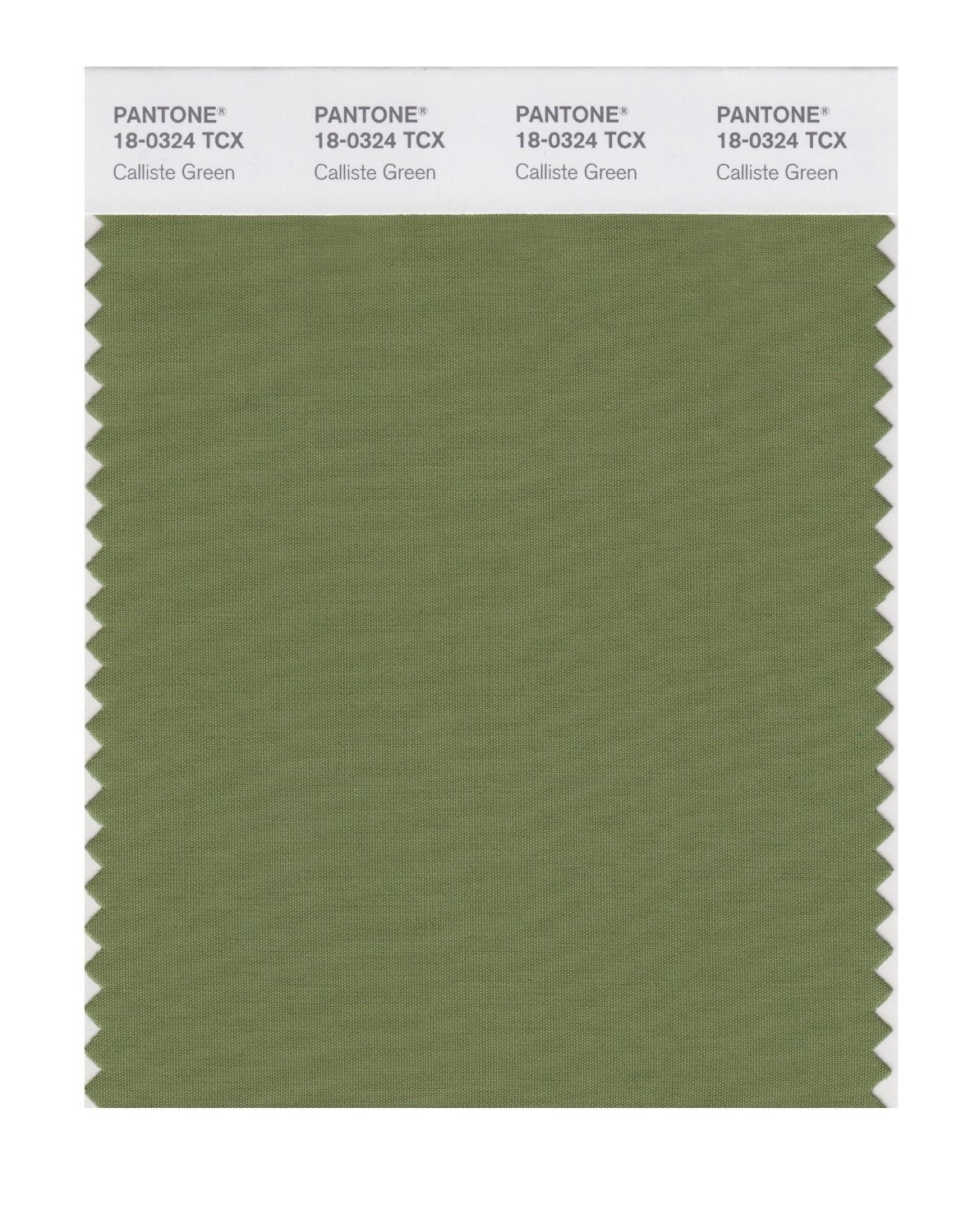 Pantone 18-0324 TCX Swatch Card Calliste Green