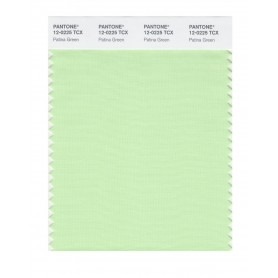 Pantone 12-0225 TCX Swatch Card Patina Green