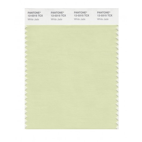 Pantone 12-0315 TCX Swatch Card White Jade