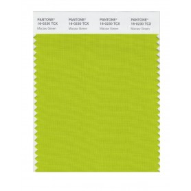 Pantone 16-0230 TCX Swatch Card Macaw Green
