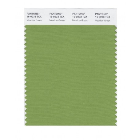 Pantone 16-0233 TCX Swatch Card Meadow Green