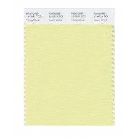 Pantone 12-0521 TCX Swatch Card Young Wheat