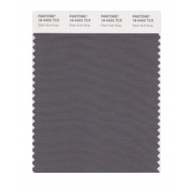 Pantone 18-0403 TCX Swatch Card Dark Gull Gray