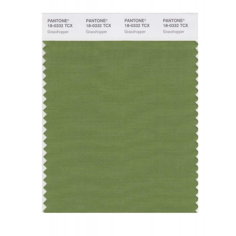 Pantone 18-0332 TCX Swatch Card Cedar Green