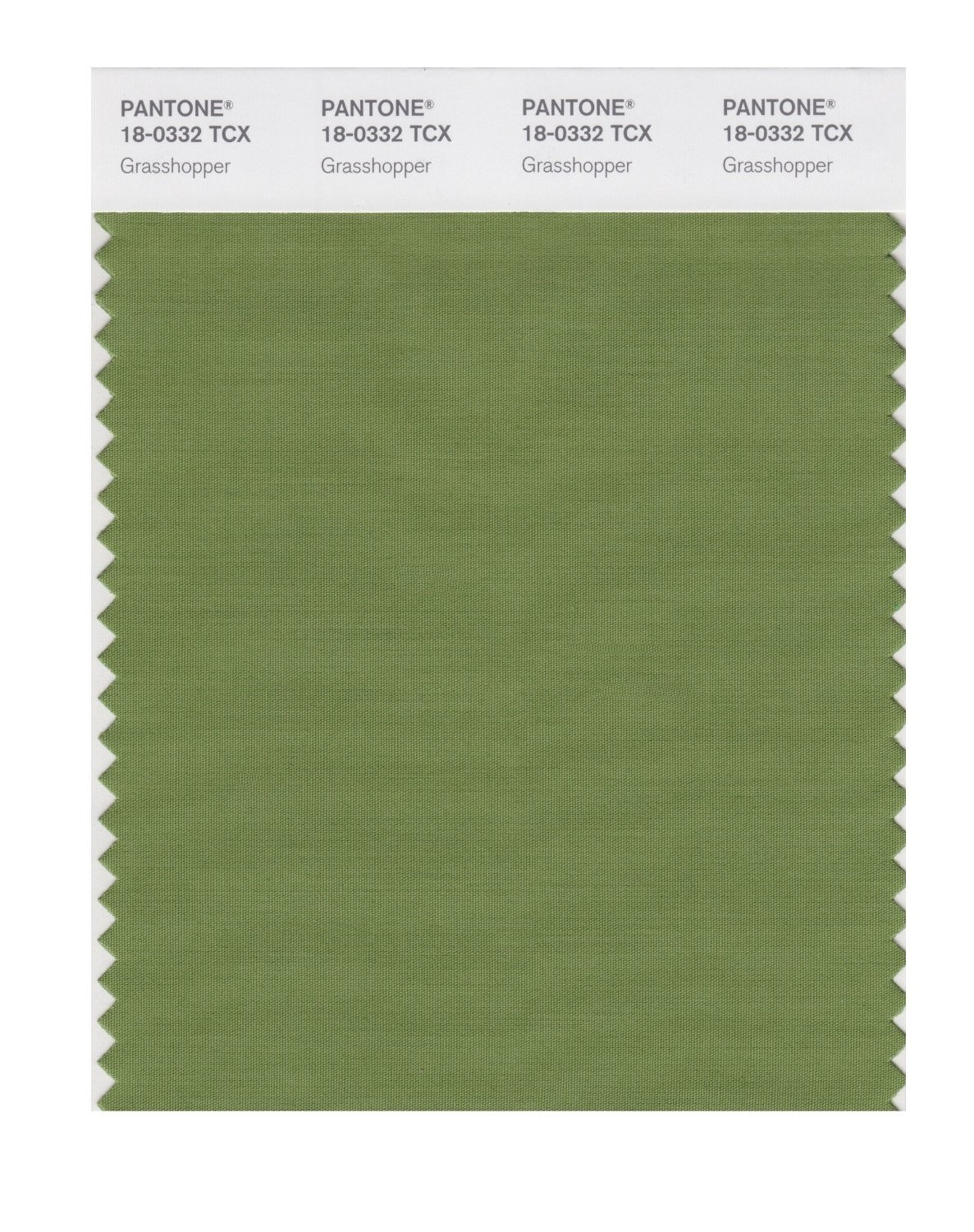 Pantone 18-0332 TCX Swatch Card Grasshopper