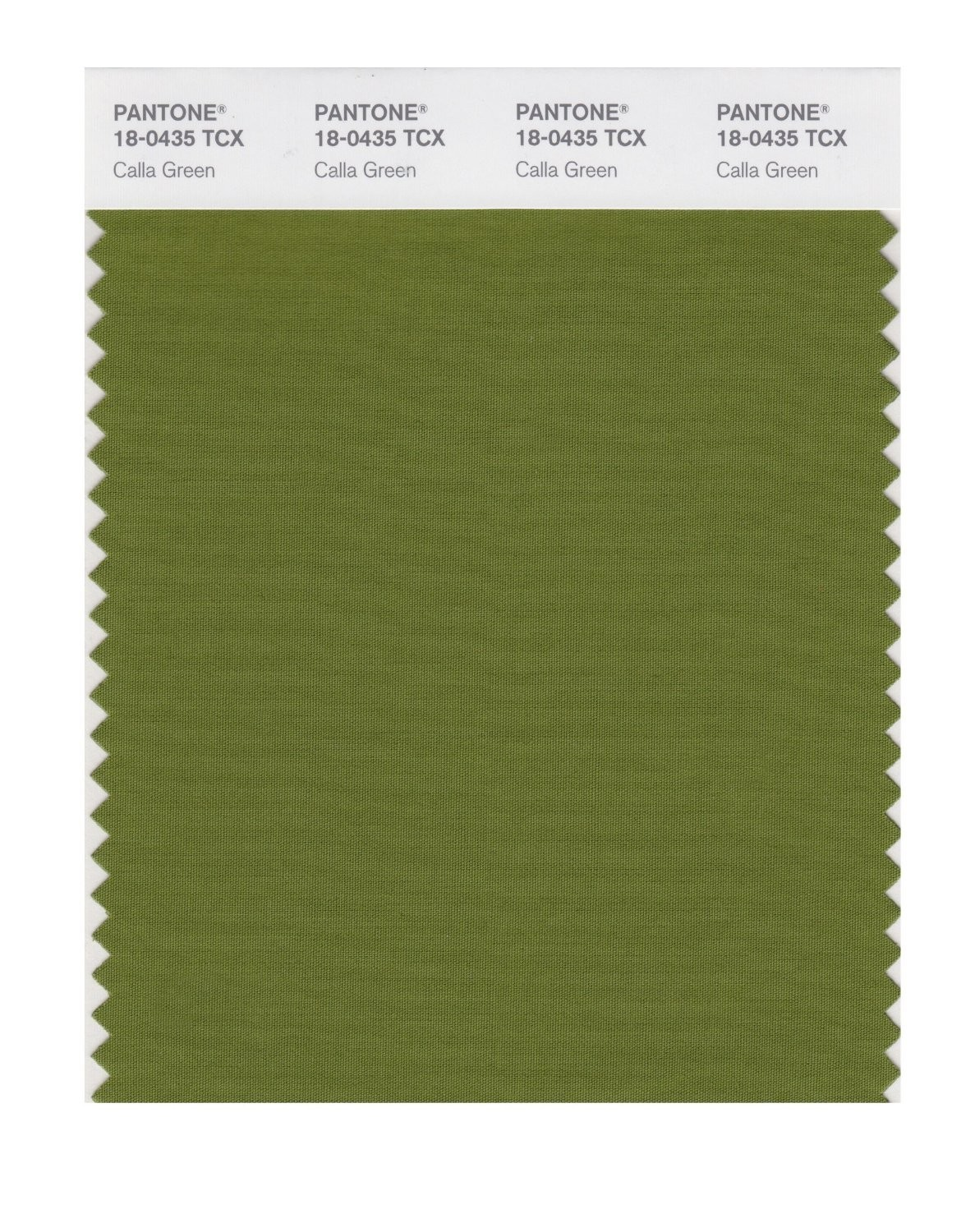 Pantone 18-0435 TCX Swatch Card Calla Green