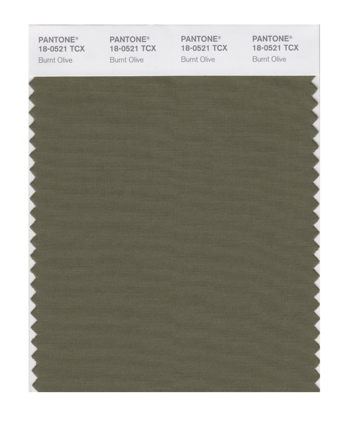 Pantone 18-0521 TCX Swatch Card Burnt Olive