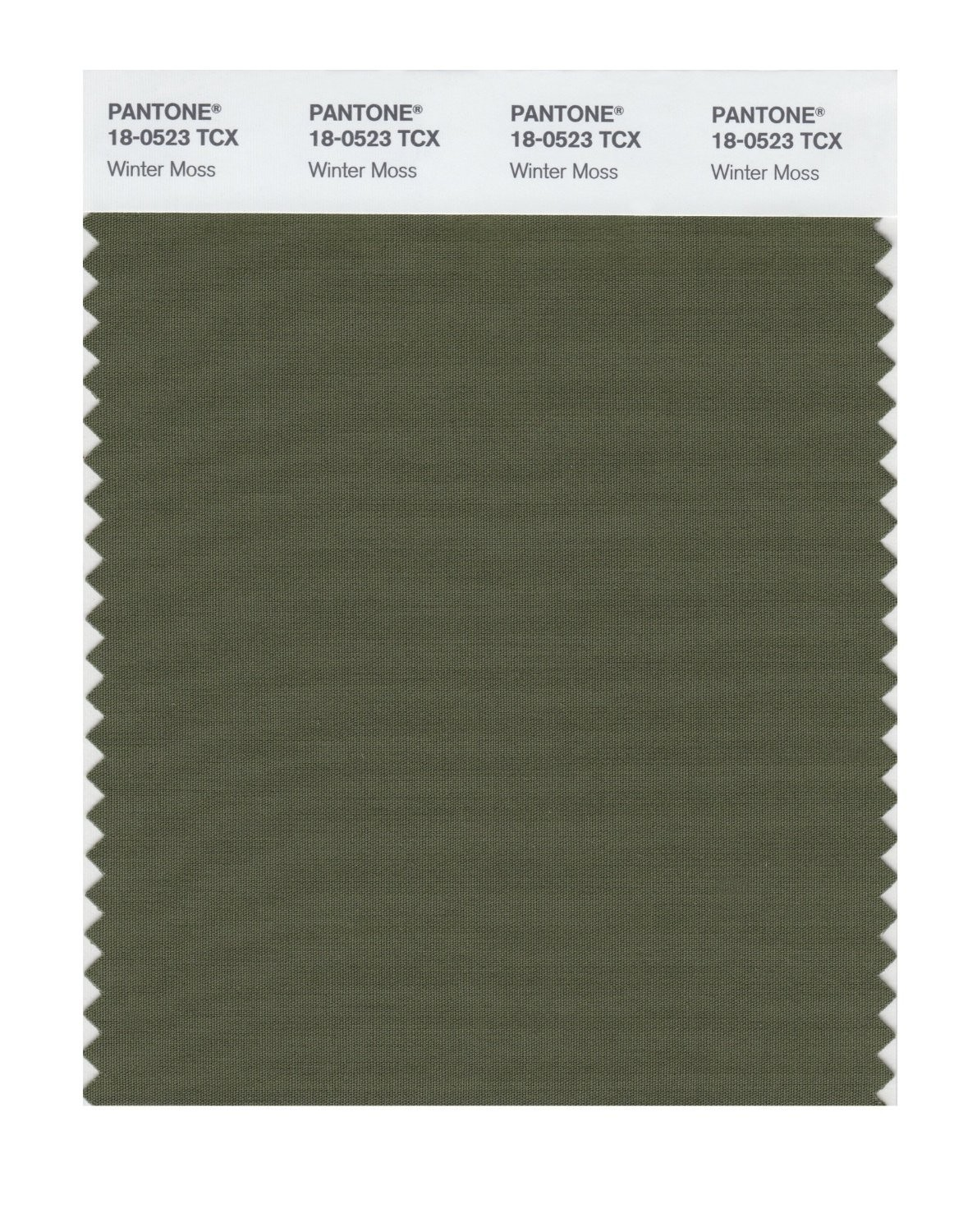 Pantone 18-0523 TCX Swatch Card Winter Moss
