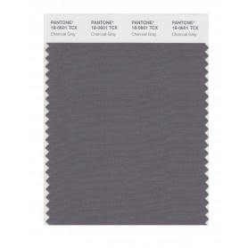 Pantone 18-0601 TCX Swatch Card Charcoal Gray