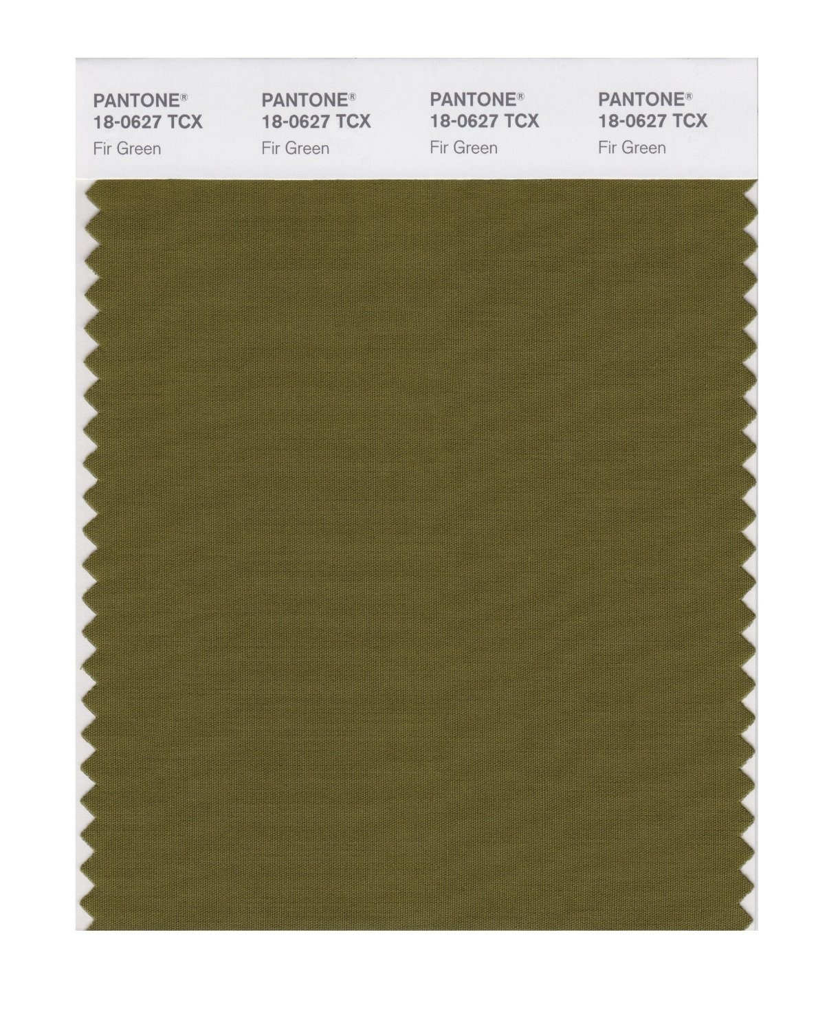 Pantone 18-0627 TCX Swatch Card Fir Green