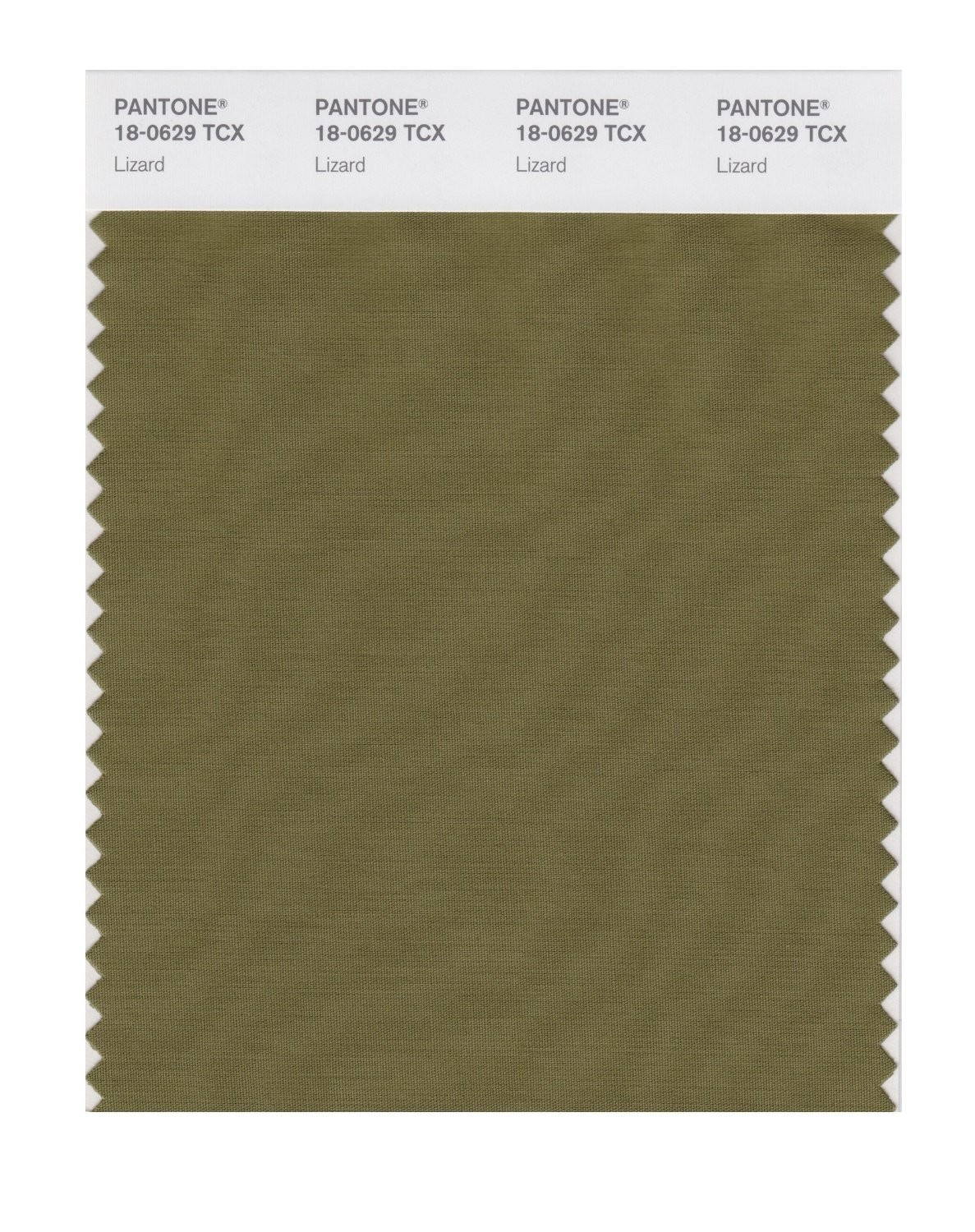 Pantone 18-0629 TCX Swatch Card Lizard