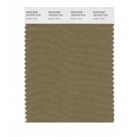 Pantone 18-0724 TCX Swatch Card Gothic Olive