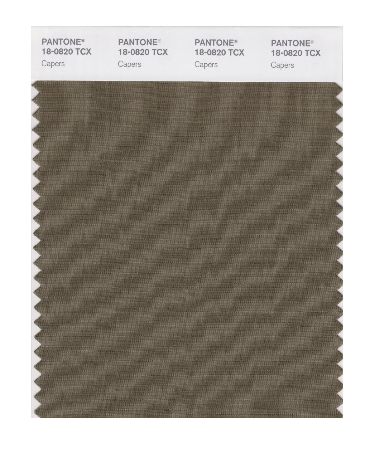 Pantone 18-0820 TCX Swatch Card Capers
