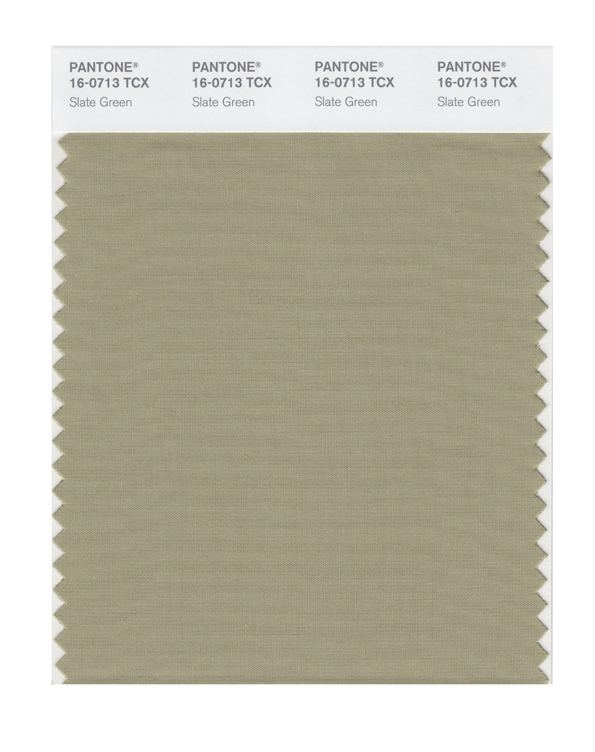Pantone 16-0713 TCX Swatch Card Slate Green