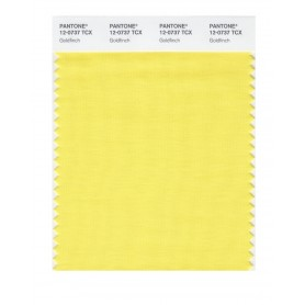 Pantone 12-0737 TCX Swatch Card Goldfinch