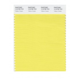 Pantone 12-0738 TCX Swatch Card Yellow Cream