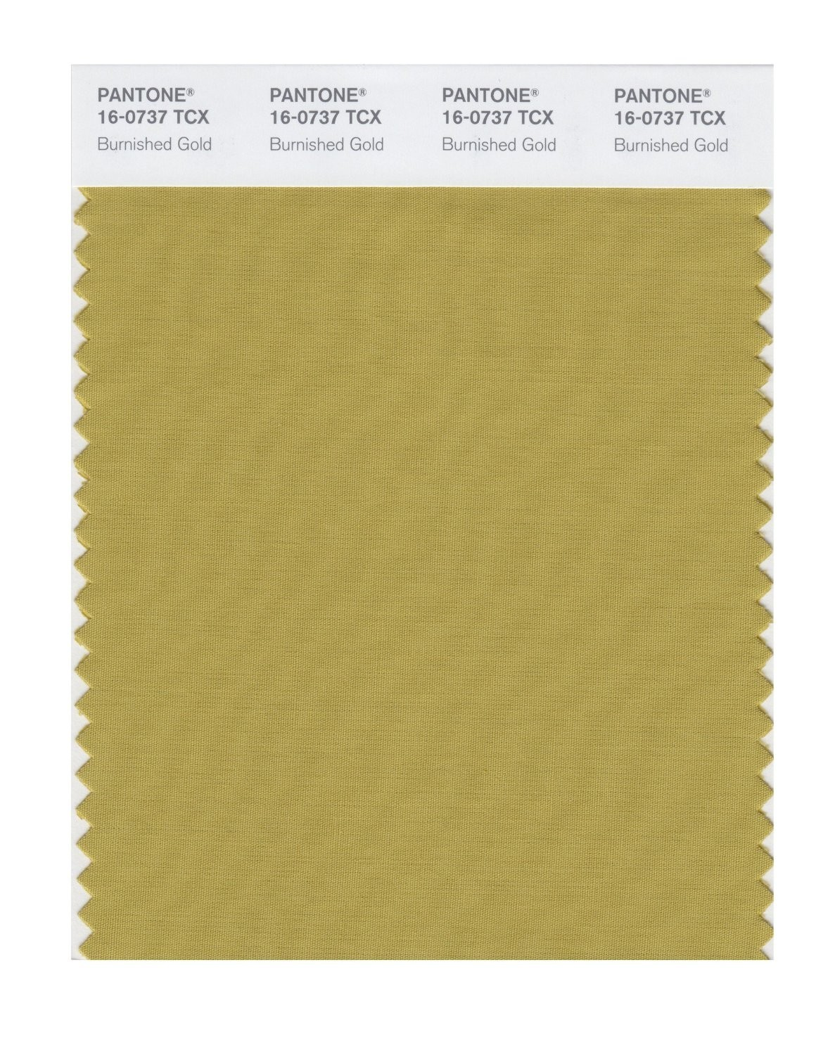 Pantone 16-0737 TCX Swatch Card Burnished Gold
