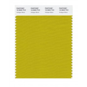 Pantone 16-0840 TCX Swatch Card Antique Moss