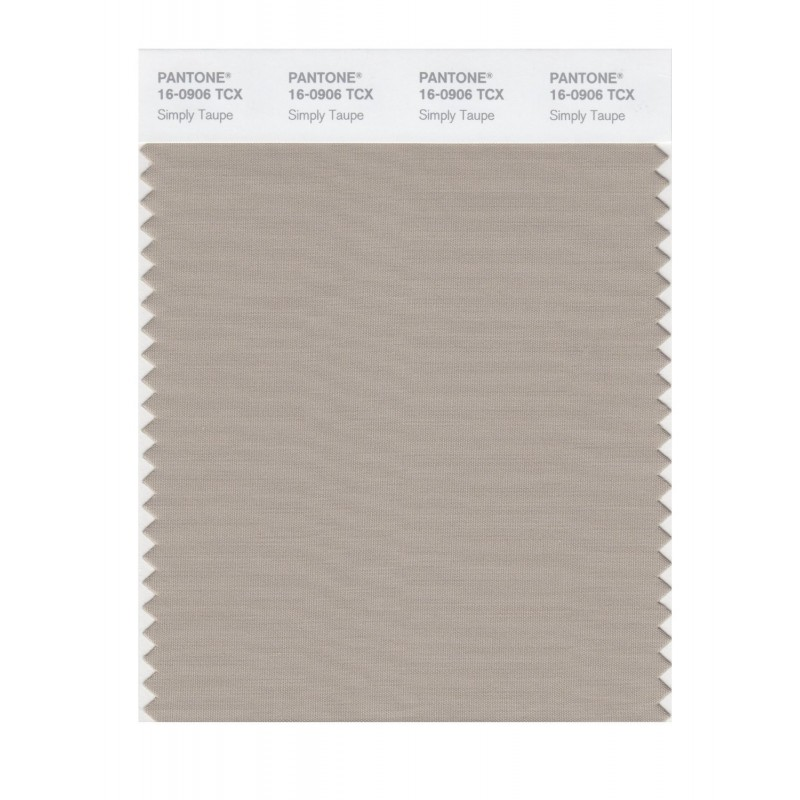 Pantone 16-0906 TCX Swatch Card Simply Taupe