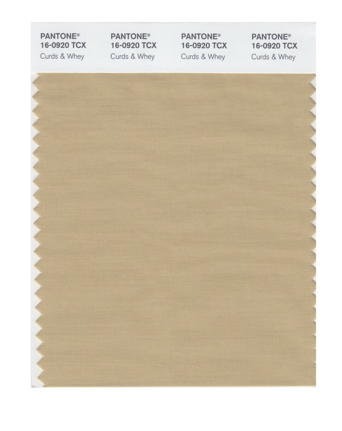 Pantone 16-0920 TCX Swatch Card Curds & Whey